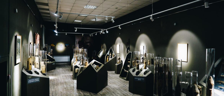 Экспозиция «Трижды три неба» в Музее изобразительных искусств г. Комсомольска-на-Амуре. (1)